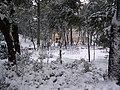 Giardini Tito Rosina - panoramio - Emanuela Meme Giudic….jpg