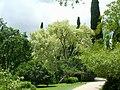 Giardino di Ninfa 16.jpg