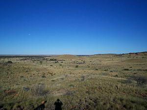 Gibson Desert - The typical appearance of the Gibson Desert