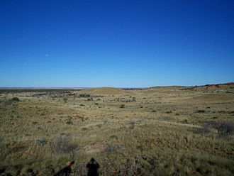 Gibson Desert - The typical appearance of the Gibson Desert