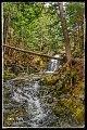 Gibson Fall, Elgin, New Brunswick Canada (33882004803).jpg
