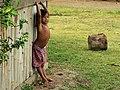 Girl (42079004775).jpg