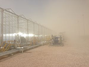 Solar thermal enhanced oil recovery - 7MW Solar EOR project in Amal, Oman