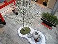 Glattzentrum - Innenansicht - Hanami 2012-03-26 17-01-10 (P7000).JPG