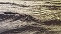 Glenelg Beach, Glenelg, Australia (Unsplash).jpg