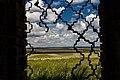 Gnilomedovo, Ryazanskaya oblast', Russia, 391159 - panoramio (6).jpg