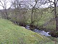 Goatscliff Brook, Grindleford - geograph.org.uk - 1604437.jpg