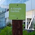 Googleplex - June 2019 (5883).jpg