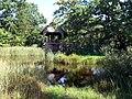 Gotland-Bunge Museum Dorfweiher.jpg