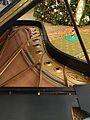 Grand Floridian Steinway Piano (31630891866).jpg