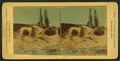 Grotto Geyser Cone. Very fine, from Robert N. Dennis collection of stereoscopic views.png