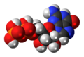 Guanosine-diphosphate-3D-spacefill.png