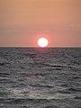 Guinea sun (3328359027).jpg