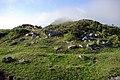 Guriezo 02 dolmen by-dpc.jpg