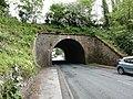 Gurnett Aqueduct, Macclesfield.jpg