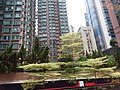 HK Bus 101 view 上環 Sheung Ean 皇后大道中 Queen's Road Central August 2018 SSG 21.jpg
