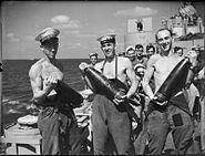 HMS Euryalus crew with 5.25 inch shells 1942 IWM A 11908