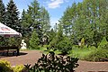 HOTEL KRASNODĘBSKI - panoramio (19).jpg