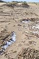 Hail on the beach - geograph.org.uk - 735797.jpg