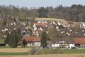 HaldenBirchwyl-20120401i.png