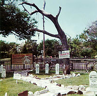 Hanging Tree at Dodge City (color print)