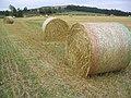 Harvest Bales - geograph.org.uk - 222596.jpg
