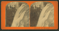 Head of Vernal (Fall), from Robert N. Dennis collection of stereoscopic views.png