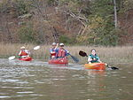 Heading out of the creek with paddles (6872071102).jpg