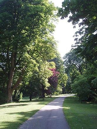 Headington Hill Park - Footpath in Headington Hill Park.