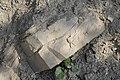 Heller plattiger Stein bei Moldovita.JPG
