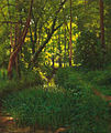Henri Biva, A woodland stream, oil on canvas, 68.7 x 57.3 cm.jpg