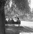 Herfsttij in Amsterdams Vondelpark, Bestanddeelnr 918-2136.jpg