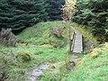 Highlandman's Wood - Glen Fruin track, Bridge - geograph.org.uk - 263783.jpg