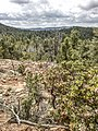Highline Trail, Payson, Arizona - panoramio (32).jpg