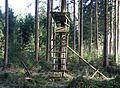 Hochsitz Deisenhofener Forst Taufkirchen-1.jpg