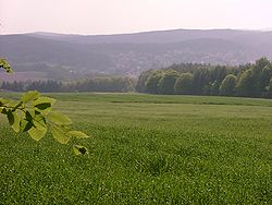 Forest and meadow landscapes characterize the West Palatinate hiking trail