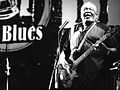 Holmes Brothers Liri Blues Festival.jpg