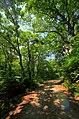 Honna, Kaneyama, Onuma District, Fukushima Prefecture 968-0016, Japan - panoramio (2).jpg