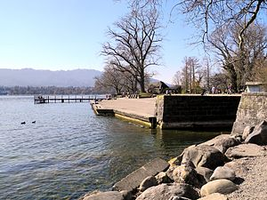 Hornbach (Wehrenbach) - Zürichhorn 2012-03-16 14-15-14 (P7000).JPG