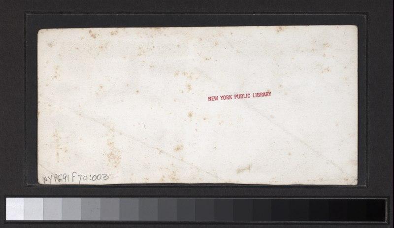 File:Horse Shoe Falls (NYPL b11708199-G91F070 003B).tiff