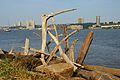 Hudson River 2012 06.jpg