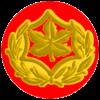 IDF RASAL Yam.png