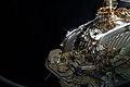 ISS-38 EVA-4 (c) Sergey Ryazansky.jpg