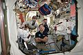 ISS-50 EVA-1 (a) inside the Quest airlock.jpg