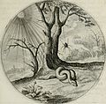 Iacobi Catzii Silenus Alcibiades, sive Proteus- (1618) (14562981828).jpg