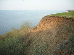 Ilmen coast.JPG