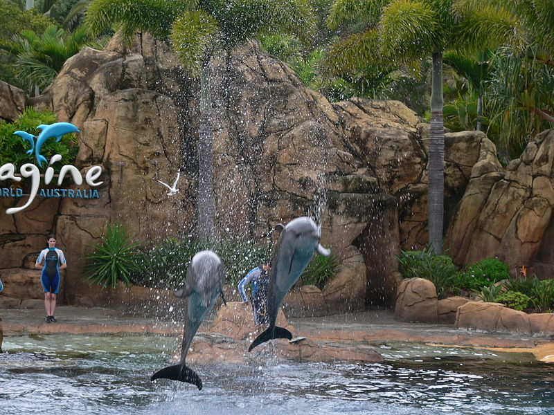 File:Imagine at Sea World.jpg
