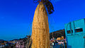Indian Sweet corn.jpg