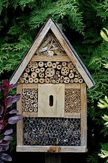 R sidence paul eluard fontenay le fleury 78330 sondage - Cabane a insectes ...