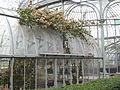 Invernadero de la Quinta Normal - Planta.jpg